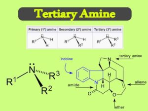 Tertiary Amine Uses || What is a Primary Secondary and Tertiary Amine?