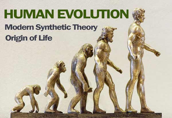 Read more about the article Theories of Evolution: class 12