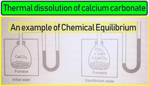 Chemical Equilibrium examples