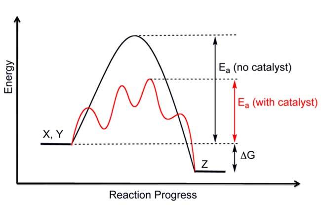 catalytic reaction