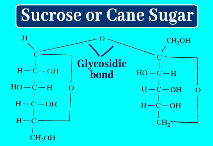 Glycosidic-bond sucrose or sugar