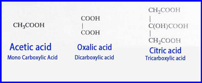 Mono carboxylic Acid