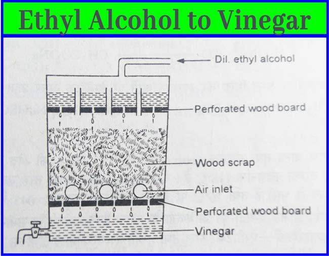 Vinegar-Acetic Acid