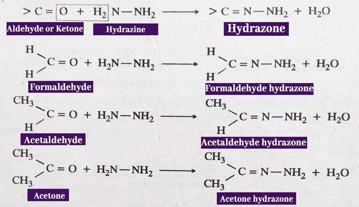 aldehydes and ketones hydrazine