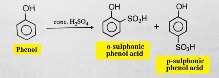 phenol sulphonation
