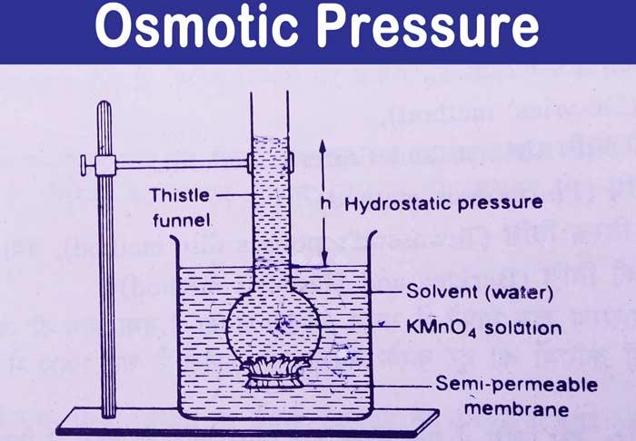 Osmotic-Pressure