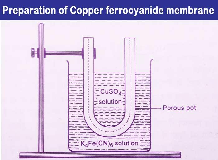 Copper-ferrocyanide-membrane