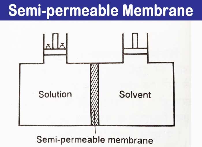 semi-permeable osmotic pressure