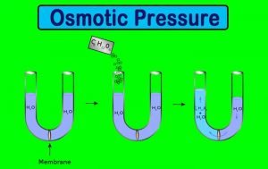 Laws of Osmotic Pressure: Isotonic Solution and Numerical Examples