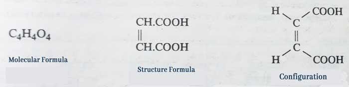 molecule formula, structure formula and configuration of maleic acid