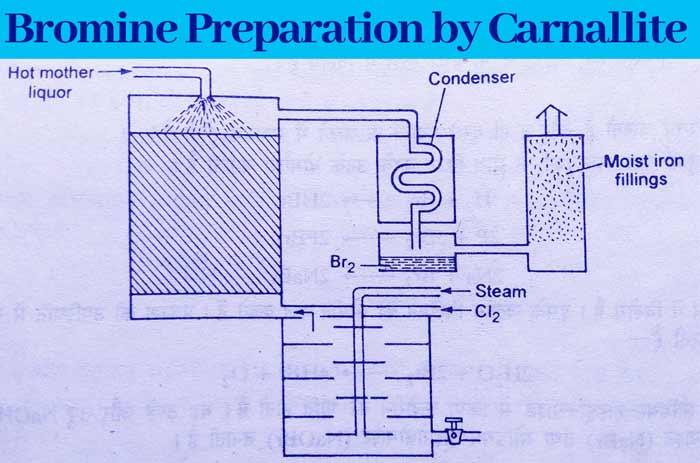 Carnallite to Bromine
