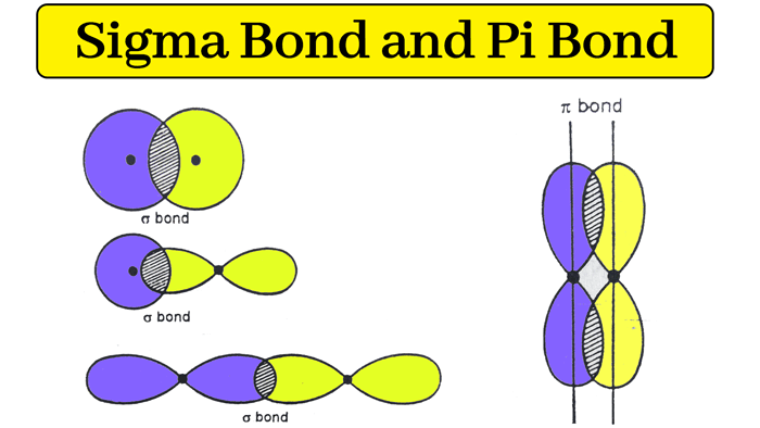 Read more about the article Hydrogen Bond : Sigma bond and Pi bond with example