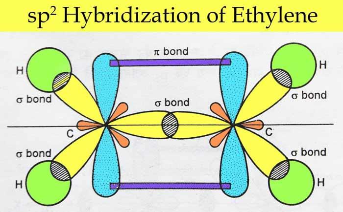 sp2hybridization-of-ethylene